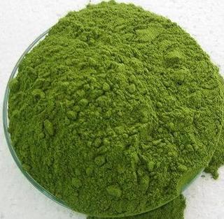 moringa-powder-fitness-nutrition-ebzasia