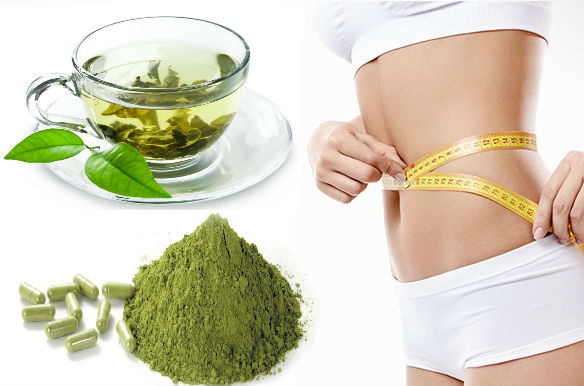 organic-asap-moringa-weight-lose-ebzasia