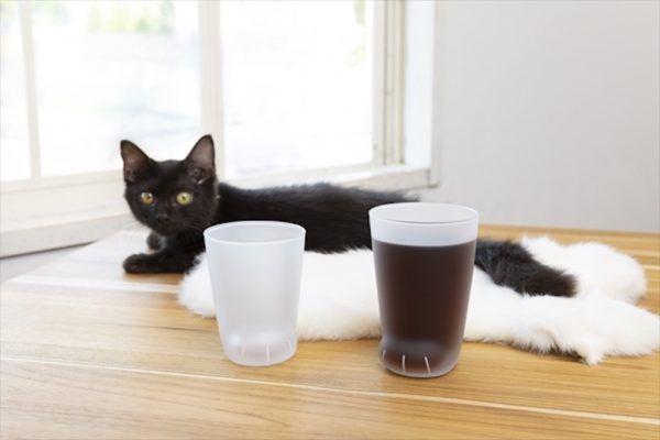 cat-cat-cup-ebzasia