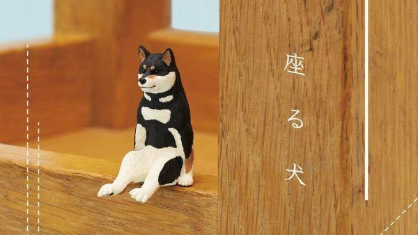 dog-sit-seat-head-ebzasia